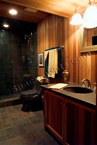Finished Basement Design Sauna Bathroom Plymouth